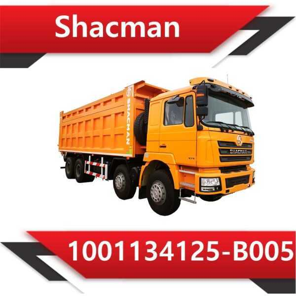 1001134125 B005 600x600 - Shacman 1001134125-B005 P-949-V791 AdBlue off